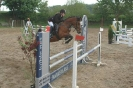 Das New Forest Pony_10