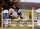 Das New Forest Pony_17