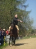 Das New Forest Pony_33