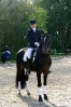 Das New Forest Pony_43